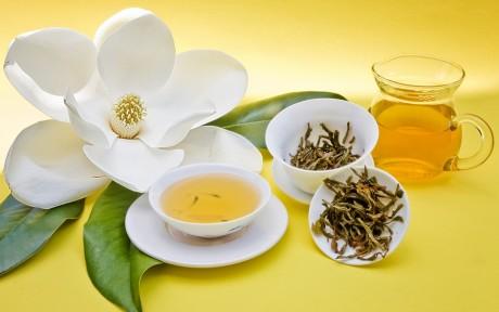 Zdrowe odzywianie. Zielona herbata